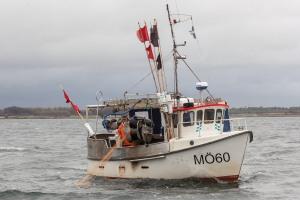 Fisket i Öresund